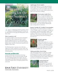 Flowering Plants for the Late Summer - Iowa State University ...