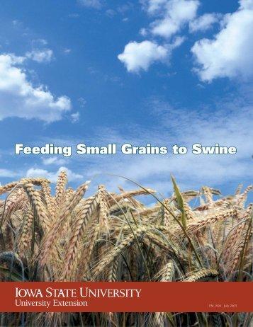 Feeding Small Grains to Swine - Iowa State University Extension ...