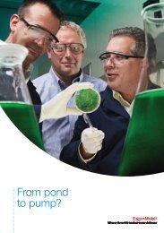 A5 Algae leaflet - ExxonMobil in the UK