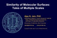Similarity of Molecular Surfaces: Tales of Multiple Scales