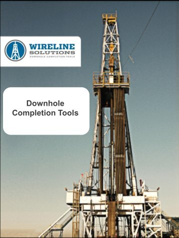 Catalog - Wireline Solutions, LLC