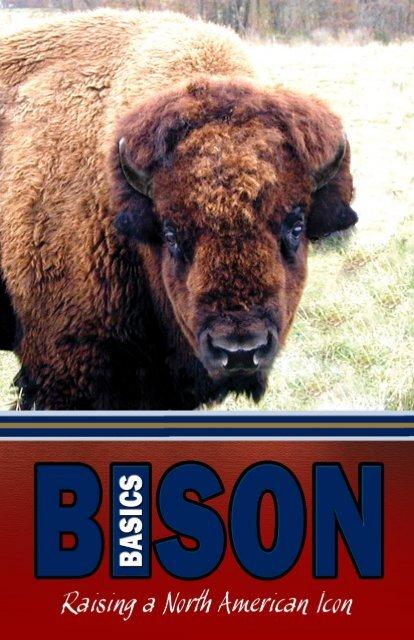 Bison Basics - Raising a North American Icon
