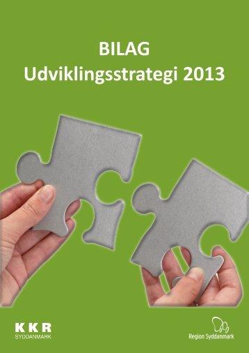 BILAG Udviklingsstrategi 2013 - Faaborg-Midtfyn kommune
