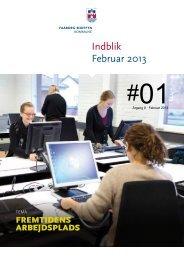 Indblik nr. 1 2013 - Faaborg-Midtfyn kommune
