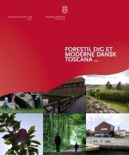 Udviklingsstrategi 2008 - Faaborg-Midtfyn kommune