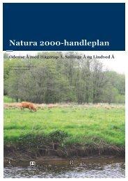 Natura 2000-handleplan - Faaborg-Midtfyn kommune