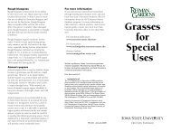 Grasses for Special Uses - Iowa State University Extension and ...