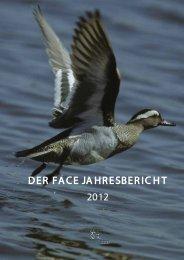 DER FACE JAHRESBERICHT 2012