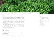 Qui è possibile scaricare l'opuscolo sulle erbe aromatiche.