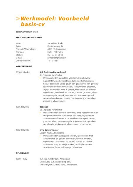 basis cv Werkmodel: Voorbeeld basis cv   Factor E