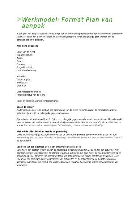 format plan van aanpak Werkmodel: Format Plan van aanpak   Factor E