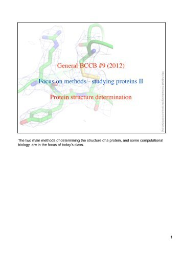 1 The two main methods of determining the structure of a protein ...