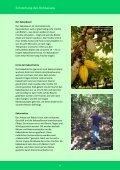 Broschüre_wo wächst Schokolade - Fair4You - Seite 4