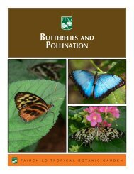 BUttERFLIES AND POLLINAtION - Fairchild Tropical Botanic Garden