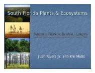 South Florida Plants & Ecosystems - Fairchild Tropical Botanic Garden