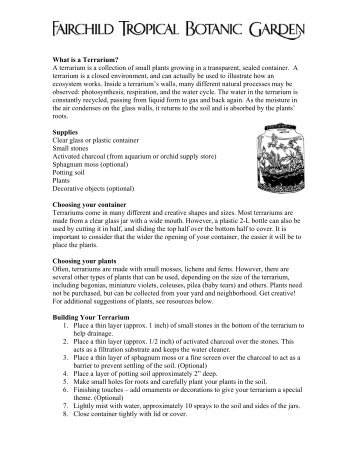 What is a Terrarium? A terrarium is a collection of small plants ...
