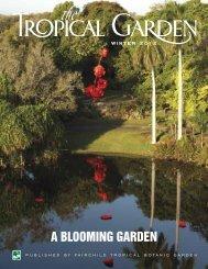 A BLOOMING GARDEN - Fairchild Tropical Botanic Garden