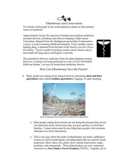 Ethnobotany and Conservation - Fairchild Tropical Botanic Garden