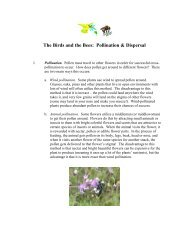 The Birds and the Bees: Pollination and Dispersal