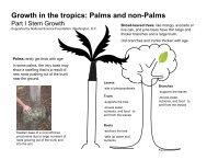 Growth in the tropics - Fairchild Tropical Botanic Garden