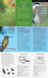 brochure - Fairchild Tropical Botanic Garden