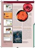 BLUMEN FAIRKAUFEN - Flower Label FLP - Seite 2