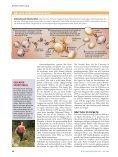 Hitze-Schutz-Proteine - fairlife - Seite 6