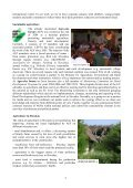 CEPTA - CEPTA and sustainable agriculture activities in ... - Fair Trade - Page 2