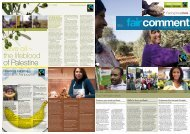 Olive oil – the lifeblood of Palestine - The Fairtrade Foundation