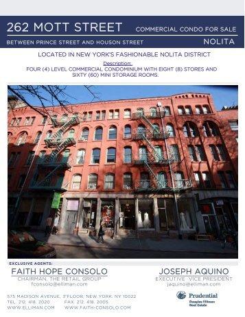 property flyer - Faith Hope Consolo