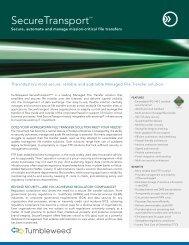 SecureTransport? - Falken Secure Networks