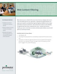 Web Content Filtering - Falken Secure Networks