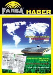 2008 Temmuz - Farba