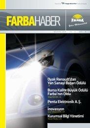 2010 Ağustos - Farba