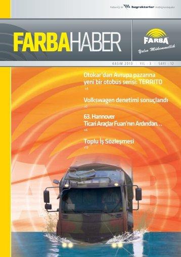 2010 Aralık - Farba