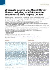 Drosophila Genome-wide Obesity Screen Reveals Hedgehog as a ...