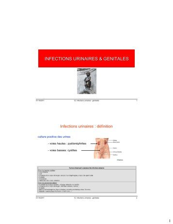 INFECTIONS URINAIRES & GENITALES