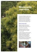 Orchard Biosecurity Manual for the Avocado ... - Farm Biosecurity - Page 6