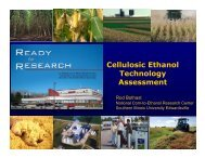 Cellulosic Ethanol Technology Assessment - Farm Foundation