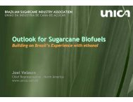 Outlook for Sugarcane Biofuels - Farm Foundation