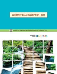 Summary Plan DeScriPtion | 2011 - FASCore