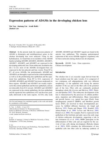 Expression patterns of ADAMs in the developing chicken lens