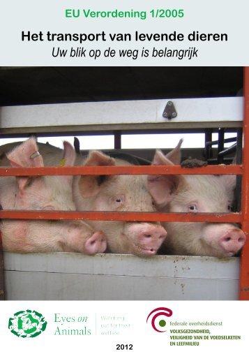 Het transport van levende dieren Uw blik op de weg is ... - Favv