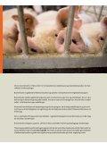 branchekoderne for svin - Fødevarestyrelsen - Page 2