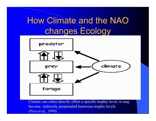 Ecology and The North Atlantic Oscillation