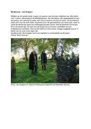 Fietsroute Wittewierum en Woltersum