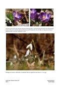 Generelt indtryk Asahi Takumar objektiver er for mig ... - HDRfoto.dk - Page 4