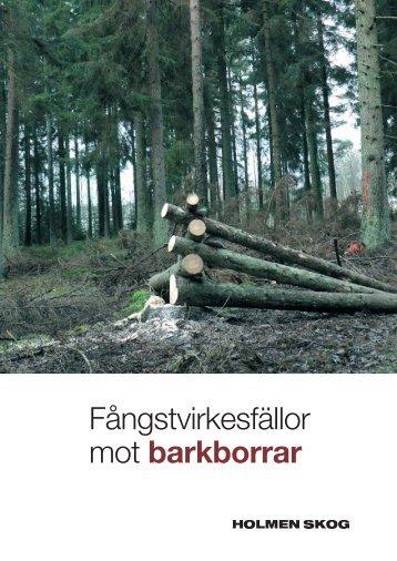 Fångstvirkesfällor mot barkborrar - Holmen