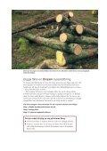 Fångstvirkesfällor mot barkborrar - Holmen - Page 3