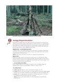 Fångstvirkesfällor mot barkborrar - Holmen - Page 5